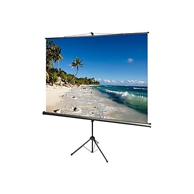 Draper® AccuScreens® 800073 136in. Portable TriPod Projector Screen, 1:1, Black Casing