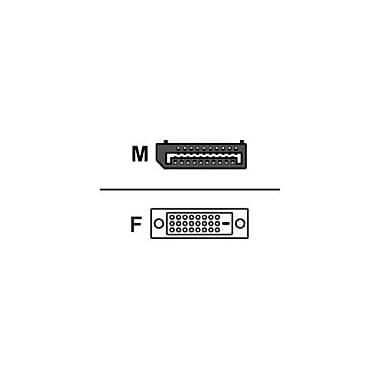 Dell™ Wyse 920327-01L DisplayPort / DVI Cable