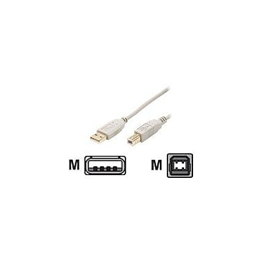 STEREN 10ft USB 2.0 Male to Male USB Cable, White