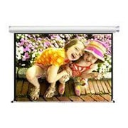 Draper ® AccuScreens ® 800008 Manual Wall/Ceiling Projection Screen, 119""