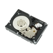 "Dell™ 300GB SAS 6Gb/s 2 1/2"" Hot-Plug Internal Hard Drive"