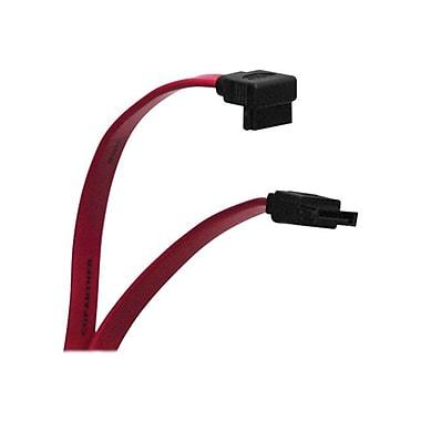 Tripp Lite® SATA Signal Cable, 19in.(L) (P942-19I)