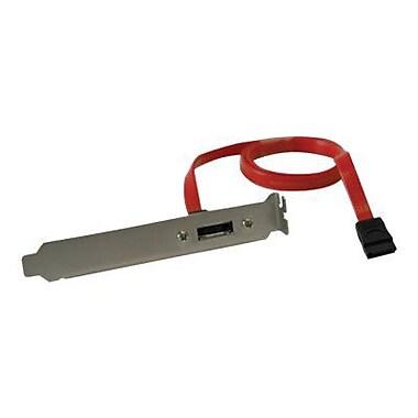 Tripp Lite® Transition Cable, 2'(L) (P952-002)