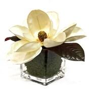 Creative Displays, Inc. Faux Cream Magnolia in Vase