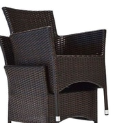 Bienal Arm Chair with Cushion (Set of 2); Espresso