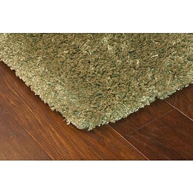 StyleHaven Shag Green/ Green Indoor Machine-made Polypropylene Area Rug (5'3