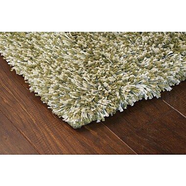StyleHaven Shag Green/ Ivory Indoor Machine-made Polypropylene Area Rug (5'3