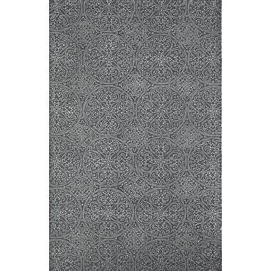 AMER Rugs Serendipity Steel Ghent Gray Area Rug; 7'6'' x 9'6''