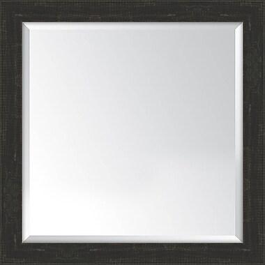Melissa Van Hise Framed Mirror; Slate Black
