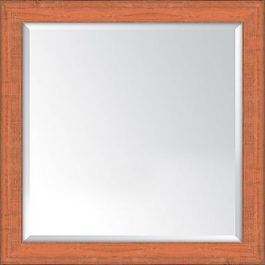 Melissa Van Hise Framed Mirror; Orange