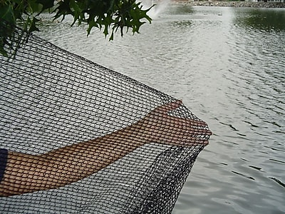 Dewitt PN1414 14' x 14' Pond Netting 1262339