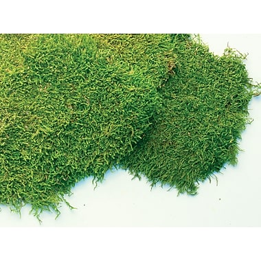 Super Moss 21513 Preserved Sheet Moss, 16 oz.