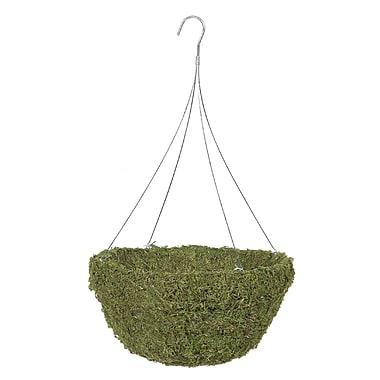 "Gardman R476 18"" Sphagnum Moss Hanging Basket with 4 Wire Hanger, Green"