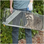 Havahart Steel Animal Two-Door Large Raccoon And Opossum Cage Trap