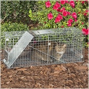 Havahart Steel Feral Stray Cat Rescue Kit