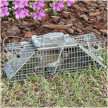 Havahart Steel Small 2 Door Easy Set Animal Trap