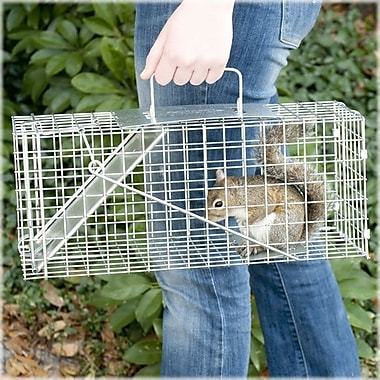 Havahart Steel Small Professional Style One-Door Animal Trap 7