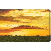 Gallery Direct Dragon Cloud by Jon Eric Narum Painting Print Canvas; 32'' H x 40'' W