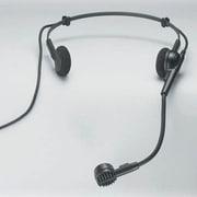 Buhl Head Worn Microphone