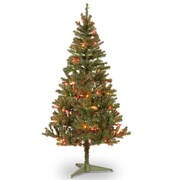 National Tree Co. Canadian Fir 6' Green Wrapped Artificial Christmas Tree w/ 200 Multicolored Lights