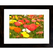 "Diamond Decor ""Field of Poppies"" Framed Art Print Poster"