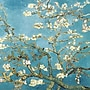 Diamond Decor Van Gogh Almond Blossoms Stretched Giclee