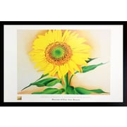 Diamond Decor Sunflower Framed Art Print Poster