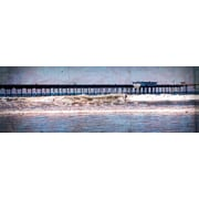 "Diamond Decor ""San Diego Surf "" Stretched Giclee Canvas Art"