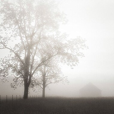 Printfinders Farmland, Appalachia, 2013 by Nicholas Bell Photographic Print on Canvas; 16'' x 16''