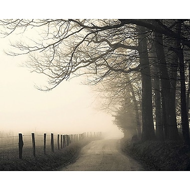 Printfinders Hyatt Lane by Nicholas Bell Photographic Print on Canvas; 24'' x 30''