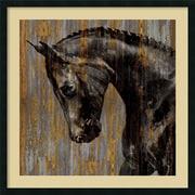 Amanti Art 'Horse I' by Martin Rose Framed Art Print