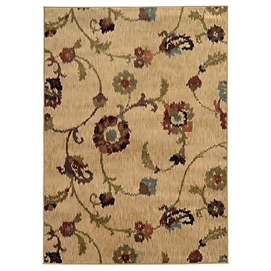 StyleHaven Floral Tan/ Multi Indoor Machine-made Polypropylene Area Rug (7'8