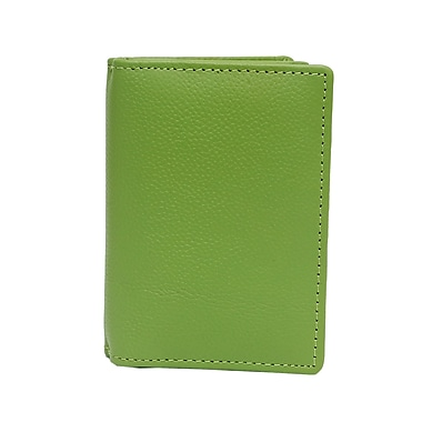 Ashlin® Abriella Ultimate Card Case, Lime Green