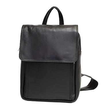 Ashlin® Mariah Ladies' Purse-Knapsack with Zippered Organizer, Credit Card Pockets, Black