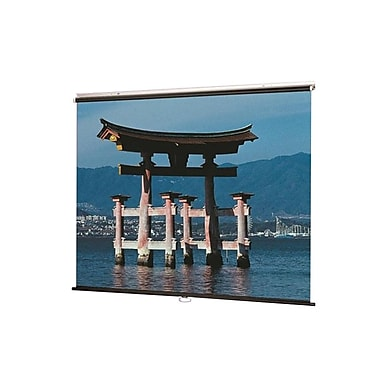 DraperMD – Écran de projection série Manual, blanc mat, 210009, écran V de 153 po, 1:1