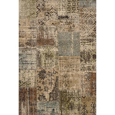Abacasa Sonoma Beige/Brown/Green/Light Blue Area Rug; 7'10'' x 11'2''