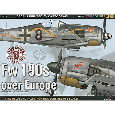 FW 190s Over Europe Part II