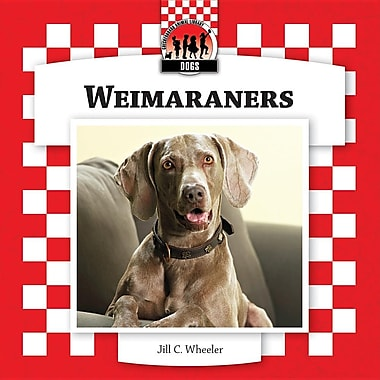 Weimaraners