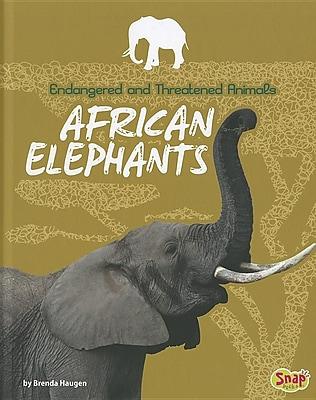 African Elephants 1306992