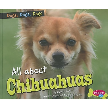All about Chihuahuas