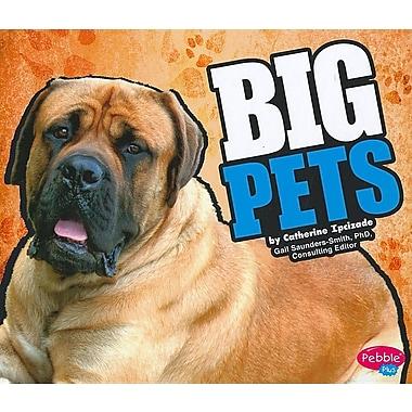 Big Pets