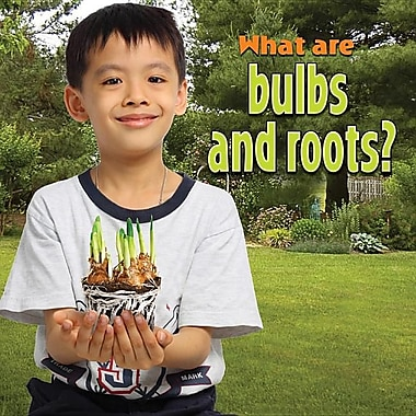 What Are Bulbs and Roots?