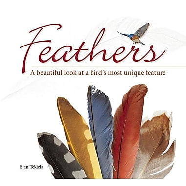 Feathers: A Beautiful Look at a Bird's Most Unique Feature