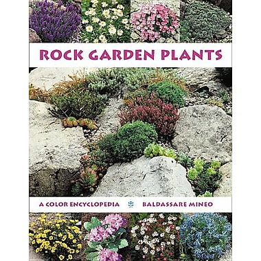 Rock garden plants staples for Typical landscaping plants