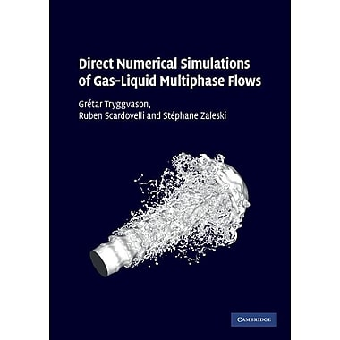 Direct Numerical Simulations of Gas-Liquid Multiphase Flows