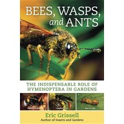 Bees, Wasps, and Ants: The Indispensable Role of Hymenoptera in Gardens by