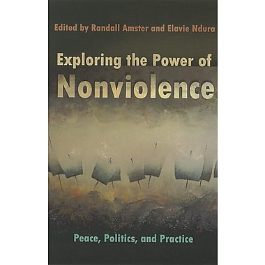 Exploring the Power of Nonviolence: Peace, Politics, and Practice