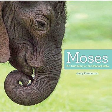 Moses: The True Story of an Elephant Baby