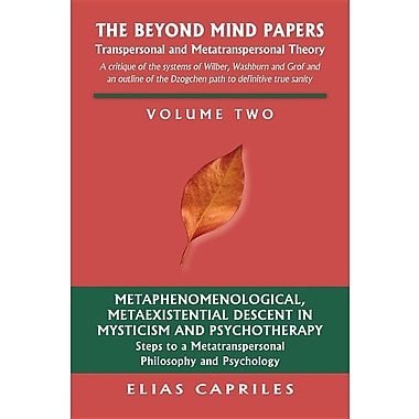 The Beyond Mind Papers: Vol 2 Steps to a Metatranspersonal Philosophy and Psychology