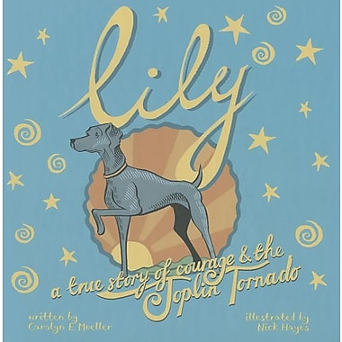 Lily: A Story of Courage and the Joplin Tornado
